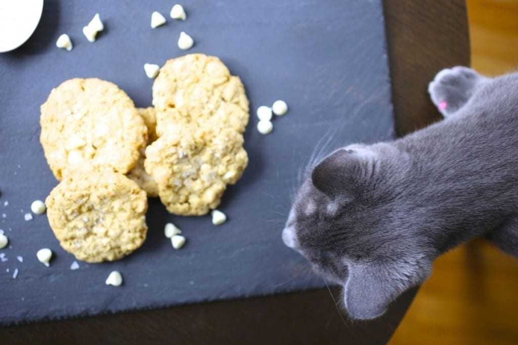 Bascule and Cookies