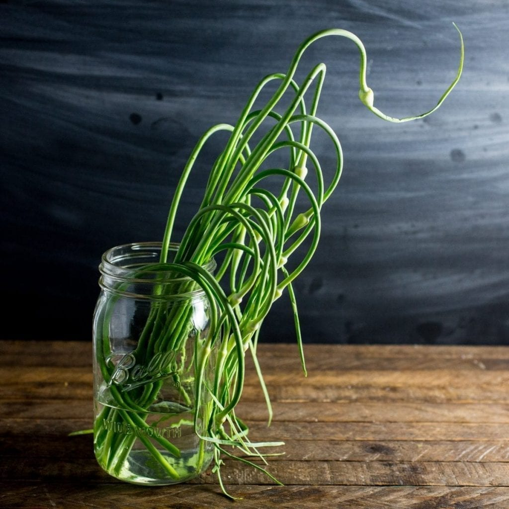 Garlic Scapes - a delicious by-product of growing hard-neck garlic